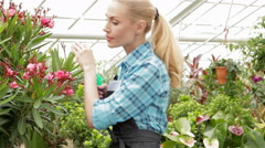 Female florist sprays water on plants at the garden centre Stock Footage