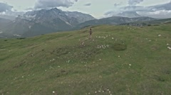 Drone flying over a woman who walks on the field in Tre Cime di Lavaredo Stock Footage