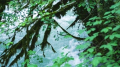 Mountain river in Caucasus mountain Stock Footage