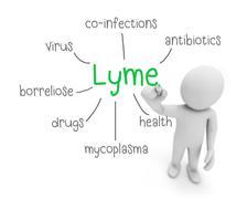 lyme - stock illustration