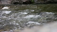 Sacred River Ganges flowing crossing rocks Stock Footage