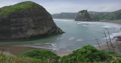 Piha beach ocean and flax bush, auckland, New Zealand Stock Footage