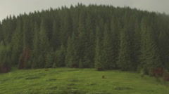 Morning mountain landscape with meadow - stock footage