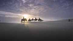 Horses and riders on beach at sunset, Bandon, OR Stock Footage