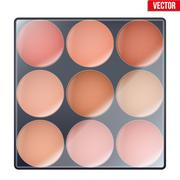 Colourful of Make Up Palette - stock illustration