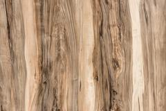 texture of wooden board with a beautiful pattern - stock photo