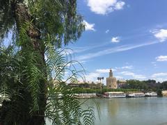 Canal de Alfonso XIII Stock Photos