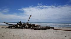 Big pieces of wood at the beach Stock Photos