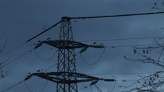 Large flock of birds fly from pylon in shock as hawk chases them Stock Footage