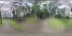 360 VR Park with birches near the busy motorway in Moscow, Russia Stock Footage