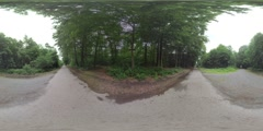 360 VR Three paved roads leading deep into the forest. Frankfurt, Germany Stock Footage