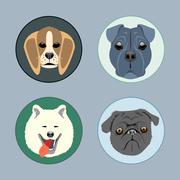 Dogs set flat style. Husky, rottweiler, taxa, victorian. Digital vector image Stock Illustration