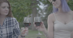 Women cheers with wine Stock Footage