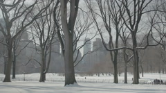 Central Park covered in Snow in New York City Stock Footage