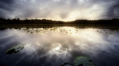 Pond with Lilly Pads reflecting clouds at dawn, Oregon Stock Footage