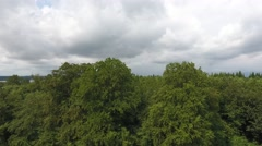 Slow low-level flight over tree tops on a cloudy day Stock Footage