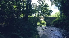 Idyllic foot bridge over river Stock Footage