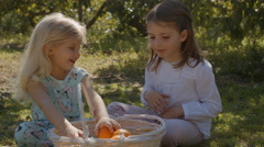 Two children sitting and playing with basket of oranges Stock Footage