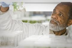 African American scientist working in laboratory Stock Photos