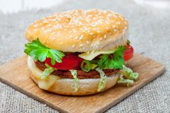 Homemade hamburger with fresh vegetables. - stock photo