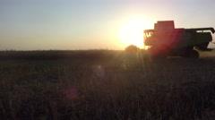 Harvesting Oilseed Rape. Machine harvesting Rape - stock footage