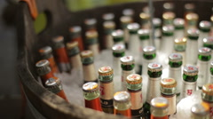 Beer bottles preserved in ice container Stock Footage