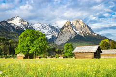 Alpine morning rural landscape with spring flowering valley meadow Stock Photos