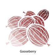Gooseberry icon - stock illustration
