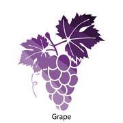 Grape icon Stock Illustration