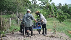 Old man and daughter together help planting tree and growing vegetable at garden Stock Footage