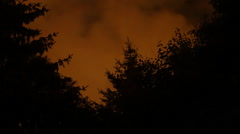 Orange clouds lit by city lights. Time lapse over trees. Stock Footage
