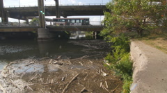 Garbage in the Don River. Toronto, Canada. Traffic in background. Stock Footage