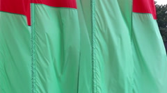 Flags red and green colors fluttering in the wind Stock Footage