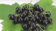 Pile of fresh, ripe, juicy berries black currant whirl - stock footage
