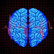 Human brain and brain graph on grids Stock Illustration