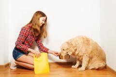 Teenage girl feeding her Golden Retriever doggy - stock photo