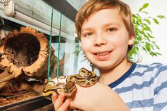 Smiling boy holding Royal python in his hands - stock photo