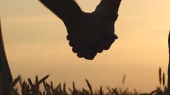 Closeup of gay couple holding hands of each other in wheat field at sunset. - stock footage