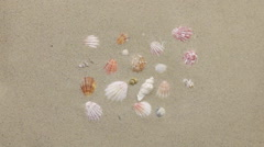 Wind blows frame made of sea shells in the sand Stock Footage