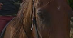 Closeup of a person sitting on a horse Stock Footage