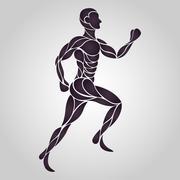 Anatomy human run Stock Illustration