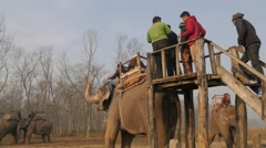 Tourists climbing on elephant for tour,Chitwan,Nepal - stock footage