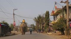 People and elephant walking in village street,Chitwan,Nepal - stock footage