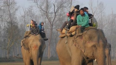 Tourists on elephant after tour,Chitwan,Nepal - stock footage