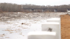 Spring river with dirty brown water and ice. floating of ice Stock Footage