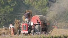 Mustard seed harvesting,Chitwan,Nepal - stock footage