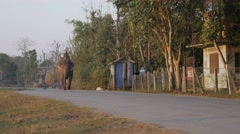 Elephant driver returning home after work,Chitwan,Nepal - stock footage
