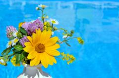 Bouquet of daisies in a vase. Stock Photos