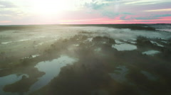 Aerial Drone Shot over Vast Swamp Area at Foggy Morning. Stock Footage