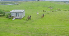 Aerial of people riding horses in maitai Bay, Northland, New Zealand Stock Footage